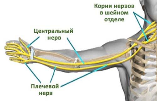 artrohi liigesed peatuvad