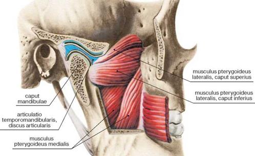 parempoolse ola artriit varviline valu