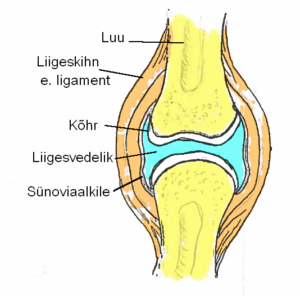 kui liigesed valus ja ola mis aitab uhise valu