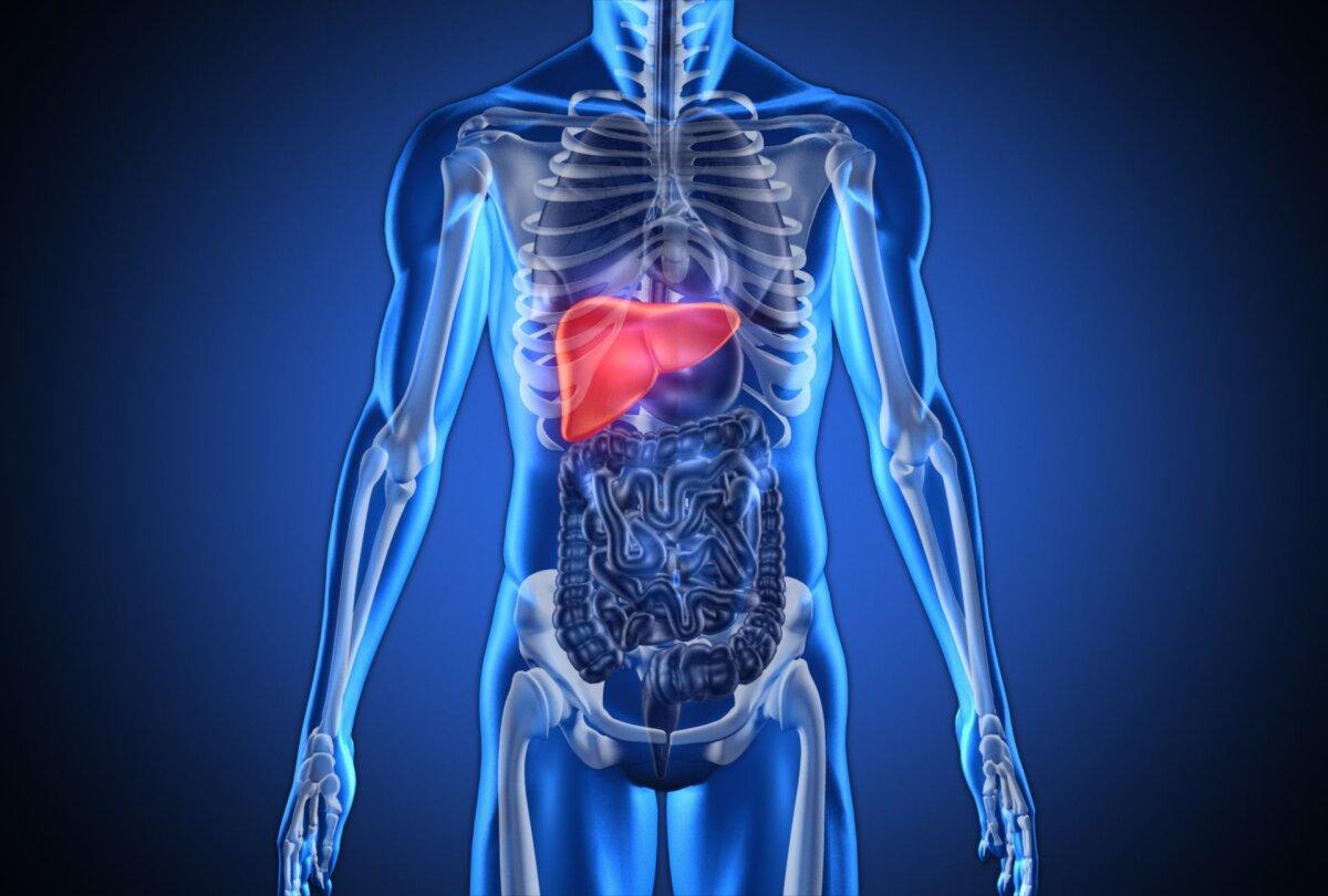 haige maksavalu liigesed liigeste retseptide haigused