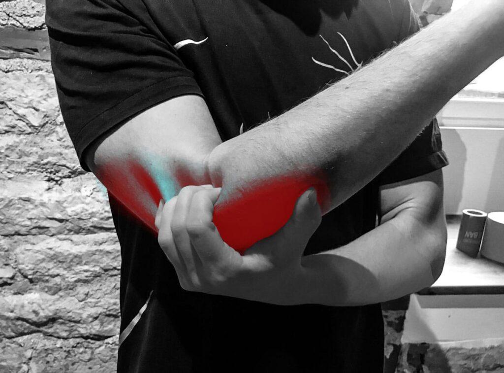 kelbow liigese lihased
