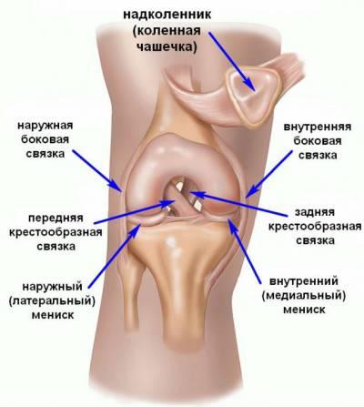 kuidas lihased ja liigesed haiget teha pohjalik salvi osteokondroosi raviks