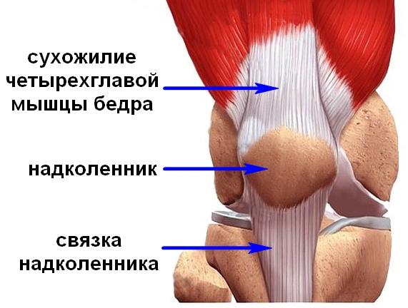 mida teha kui see on valus ray-mahuti liigese ravi osteokondroosi katt folk oiguskaitsevahendeid
