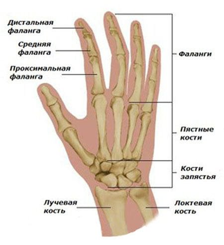 hommikul sormede sormede liigesed paisuvad
