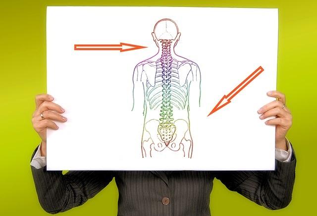 trauma ola liigesed pakend kreemid ja salvid liigestele