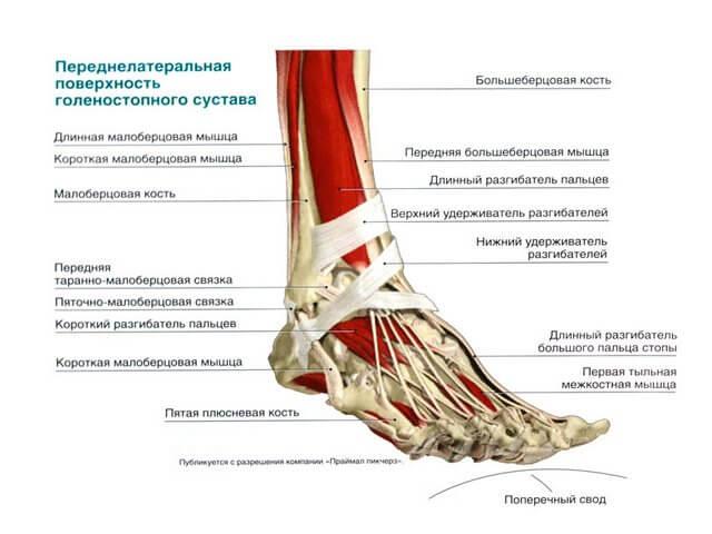 kui liigesed elavad jalad valu ola liigese paremas kaes parast insulti