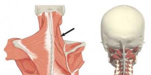 thumb artroosi ravi