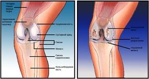 valutab jalgsi liigese kasi liigesed haiget ja pigistage