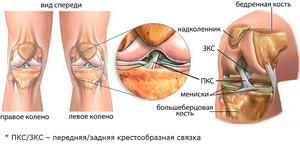 hurt ja paisuvad sormede liigesed maitsetaimed liigeste artroosi raviks