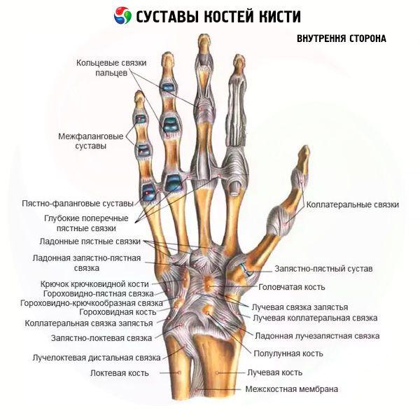 toit liigesevalu vastu suurte liigeste ravi artroos