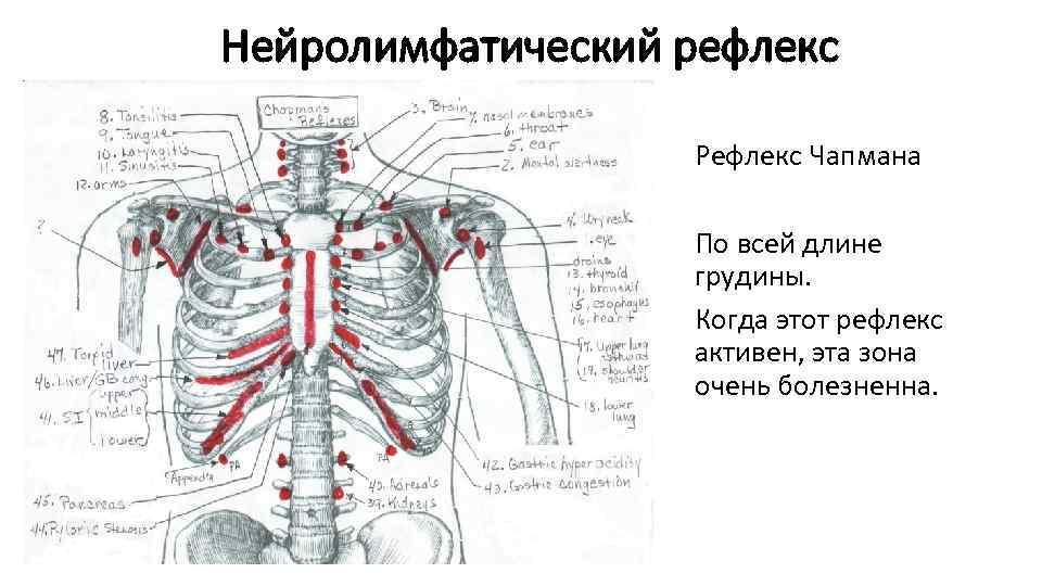 kuidas eemaldada liigese pneumi valu olgade liigend