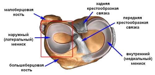 liigeste tootlemine venitamise ajal