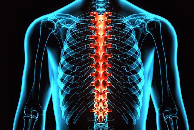 polveliigese anesteesia artroosi ajal kreem kondroksiidi liigestele