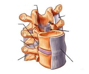 osteokondroos vaagna liigestes valus puusad uhises