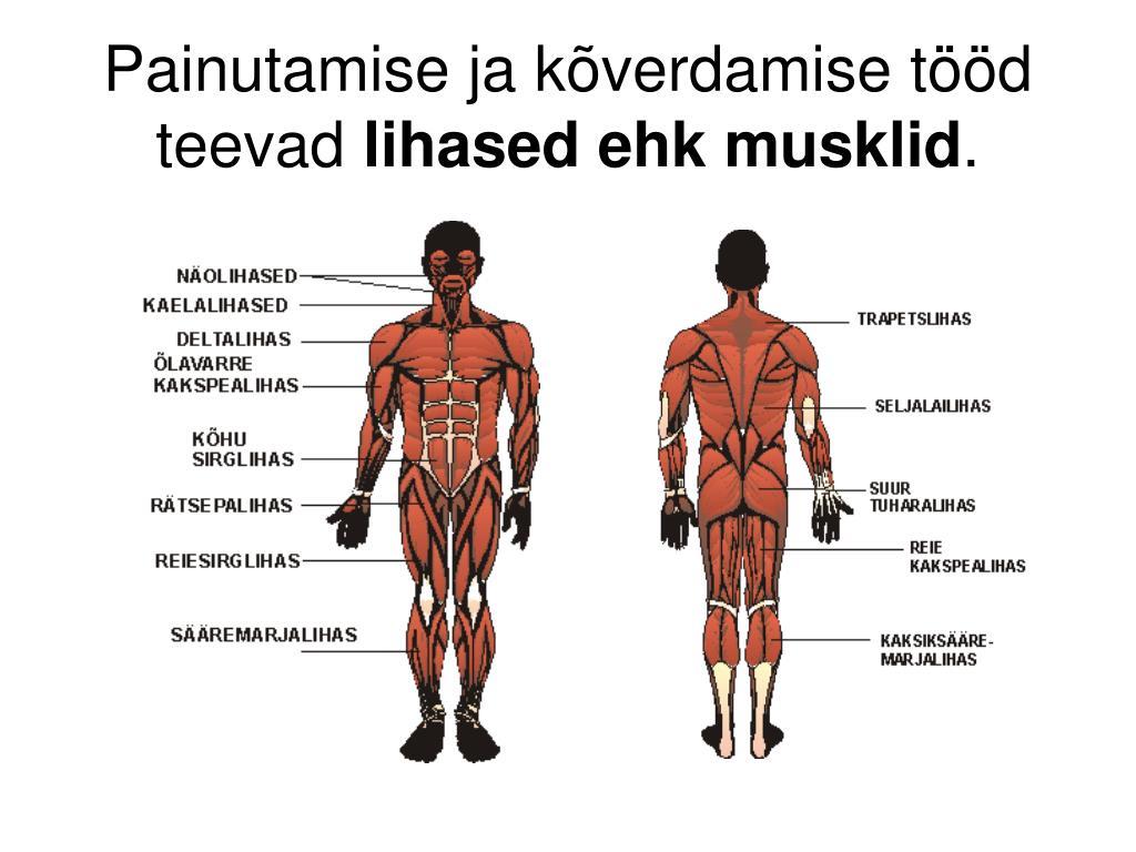 sore luud liigesed ja lihased folk oiguskaitsevahendeid liigeste artriidi artriidi