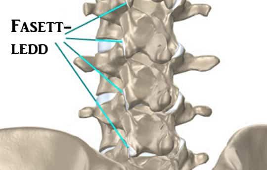valus lihased ja liigesed mida see voib olla vaga kahjustav ola liigend ei saa oma katt tosta